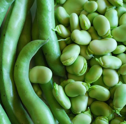 Organic Lima Beans