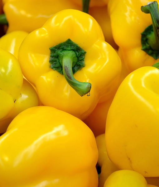 Organic Yellow Pepper