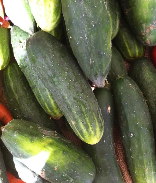 Organic Local Cucumber