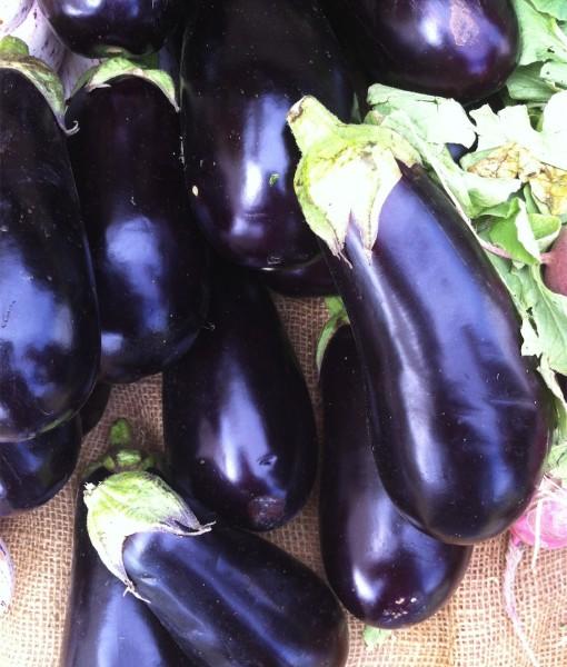 Organic Aubergine Black