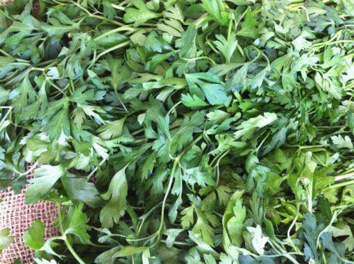 Organic Parsley