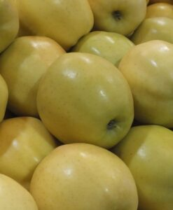 Manzana Golden Eco