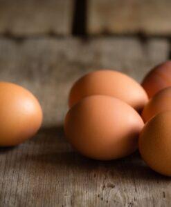 Huevos y Lácteos
