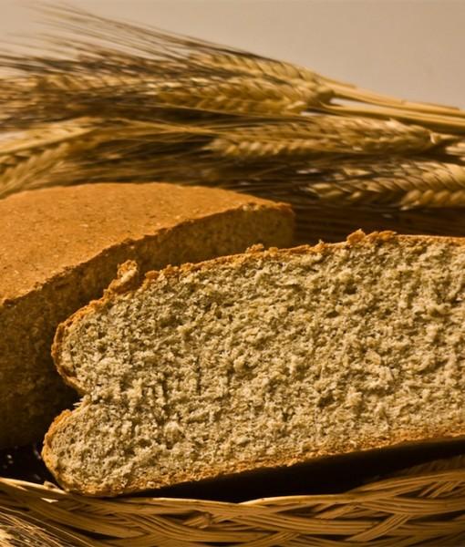 Organic Cateto Bread